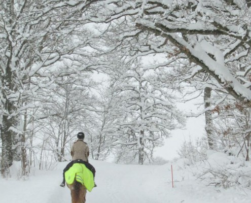 Vinterridtur