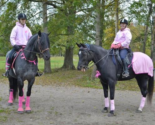 Pink Ride